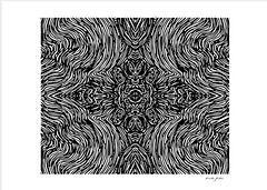 see through.jpg