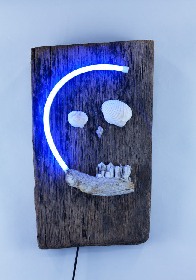 """Driftwood Skull Found objects and LED Neon 8"""" x 13.5"""" 2021"""