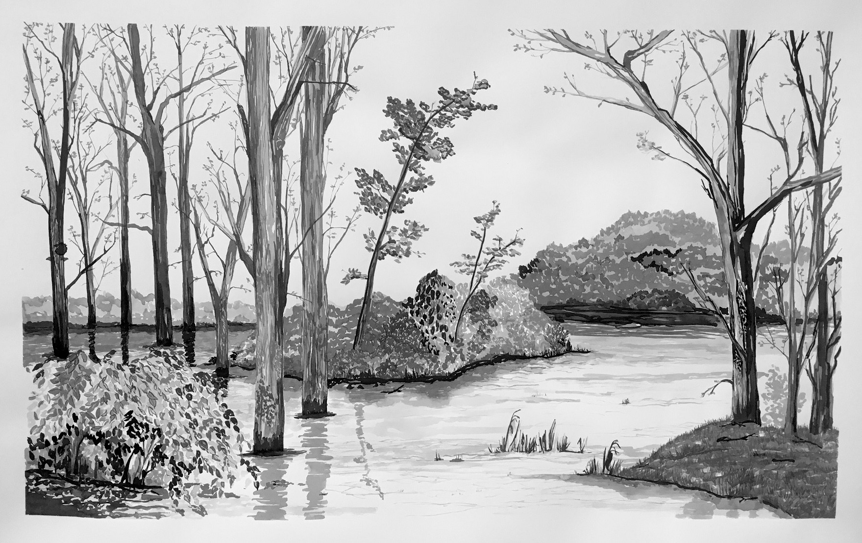 Landscape Drawing (Draw Water with Ink) Assigment