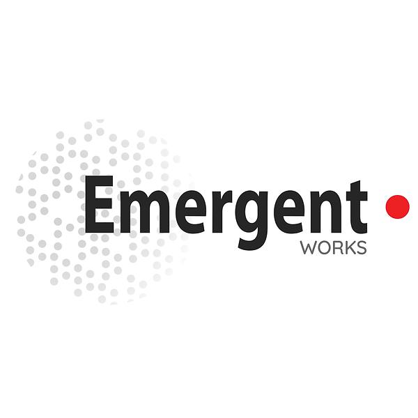 emergent works business management consultants
