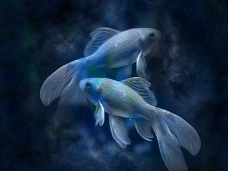 MOON ASTROLOGY | Pisces New Moon