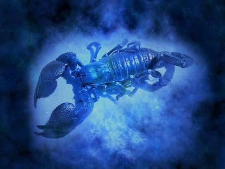 MOON ASTROLOGY | Scorpio Full Moon