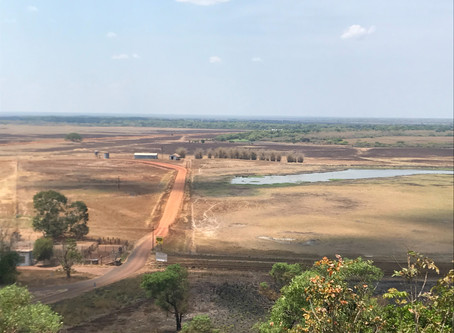 Mary River croc country