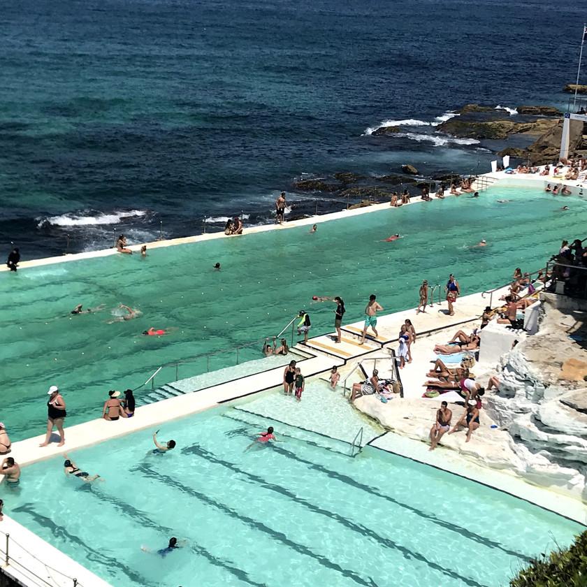 icebergers swimming pool