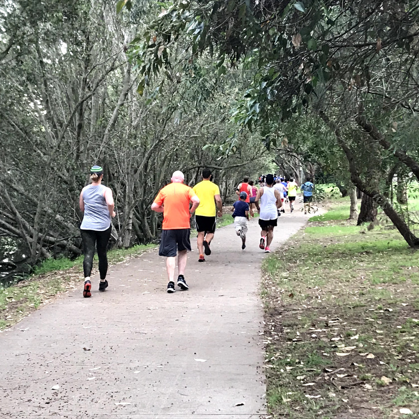 running along avenue of trees at parkrun