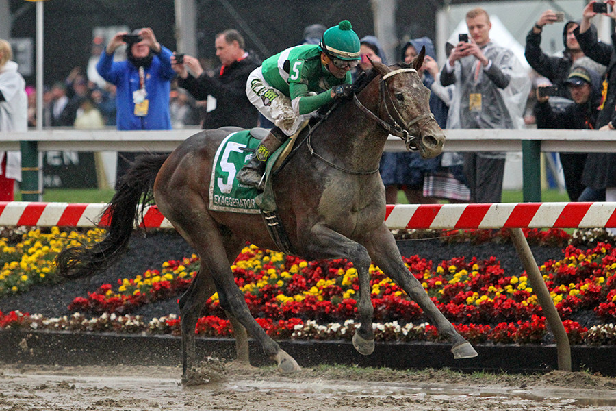 EXAGGERATOR, with jockey Kent Desormeaux riding, won the Preakness Stakes at Pimlico Race Course on Saturday, May 21, and handed Kentucky Derby winner, Nyquist, his first defeat. (Photo by Jessie Holmes/EquiSport Photos)