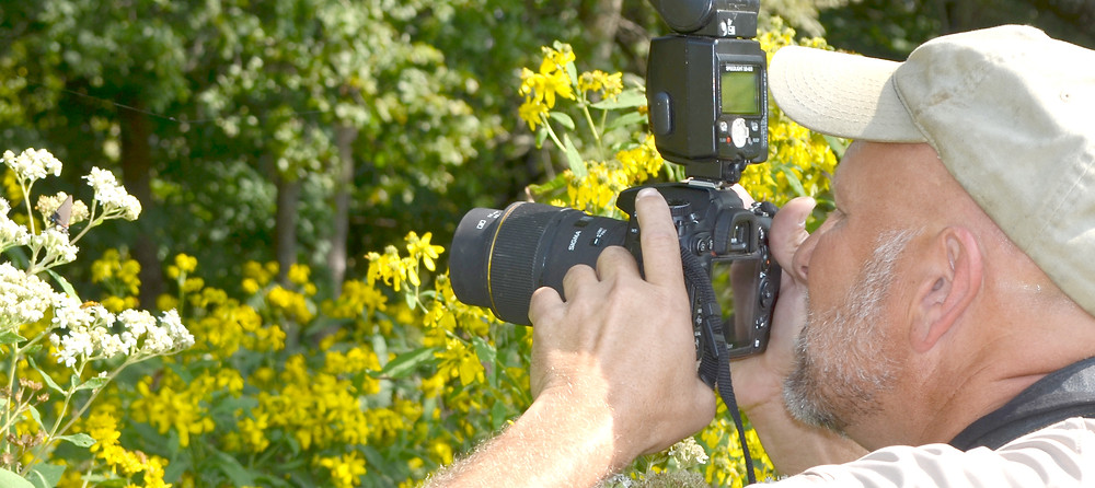 A BUTTERFLY captures the attention of wildlife biologist Joe Lacefield - and his camera - during a recent visit to a farm in Woodford County. Lacefield especially takes pride in being able to document the existence of rare wildlife and plants, including the Kentucky clover. (Photo by Bob Vlach)