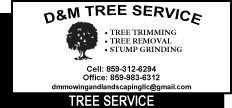 D&M Tree Service 2.jpg