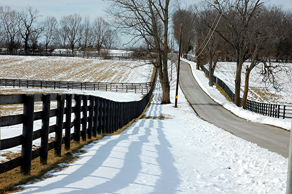 COUNTY ROADS around Woodford County were snow filled over the weekend, but by Monday, Jan. 25, the snow began to melt and the roads were cleared leaving behind beautiful scenery along fenced-lined roads like Spring Station Road near Midway. (Photo by Rick Capone)