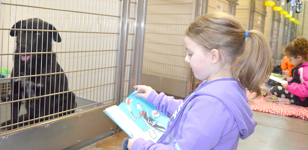 """AVERY WOODSIDE, a first-grader at Woodford Christian School, read to Jagger at the Woodford Humane Society. """"I liked when I read to the doggie and he just sat down and was really calm,"""" said Avery, 6. (Photo by Bob Vlach)"""
