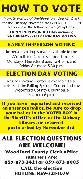 How to Vote Yellow 10-15-3t.jpg