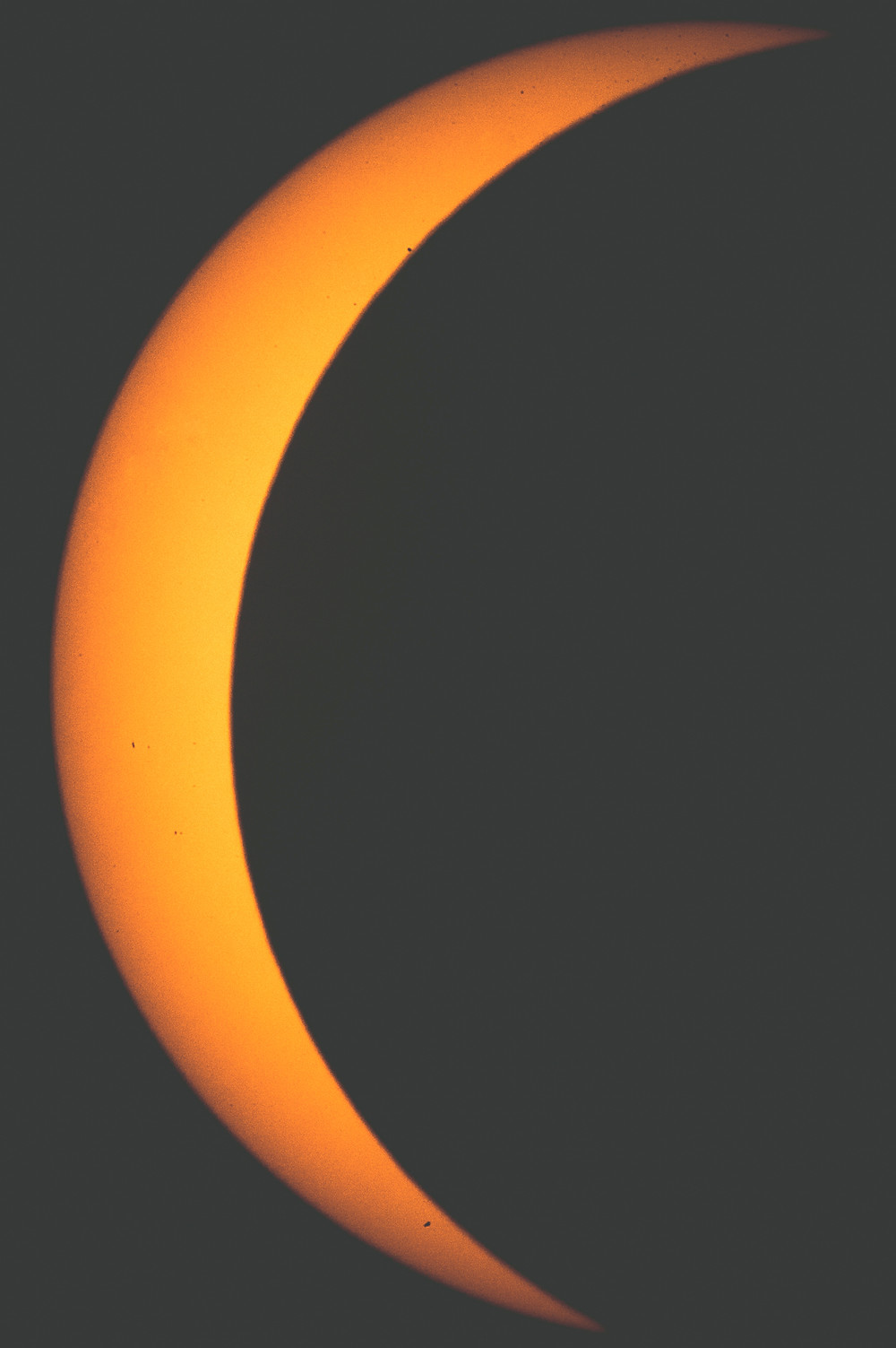 MONDAY'S near-total solar eclipse captured the imagination of most of the county, with people viewing the celestial event in numerous local places. (Photo by Bill Caine)