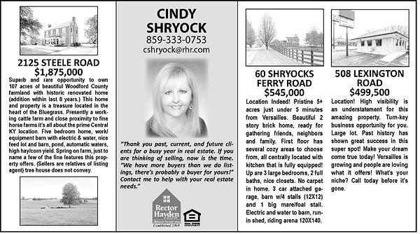 Cindy Shryock 2020 Blanket.jpg