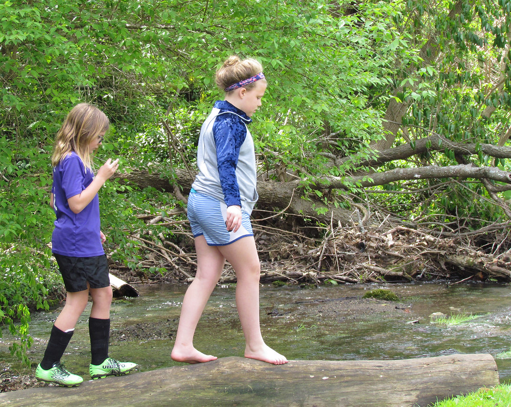 """CHLOE MCELWAIN, left, and Evie Hall walked carefully on a log spanning the creek at Big Spring Park on """"Earth Day at Big Spring Park"""" Saturday. Chloe's mother, Erin, said she and her family have been coming to the park behind the county courthouse since they moved to Versailles three years ago. """"It looks a lot more clean,"""" she said. (Photo by John McGary)"""