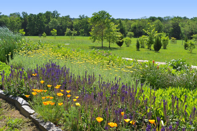 LOCUST HILL FARM will be one of the stops on the Woodford County Woman's Club's 2017 garden tour. The ornamental grasses and flowering perennials of this large meadowesque garden (designed by John Michler) bridge nicely with the modern architecture of the owners' home and views of the surrounding natural fields and forests. The large variety of plant material speaks to their advanced horticultural interests. (Photo submitted)