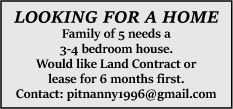 Looking for a home.jpg