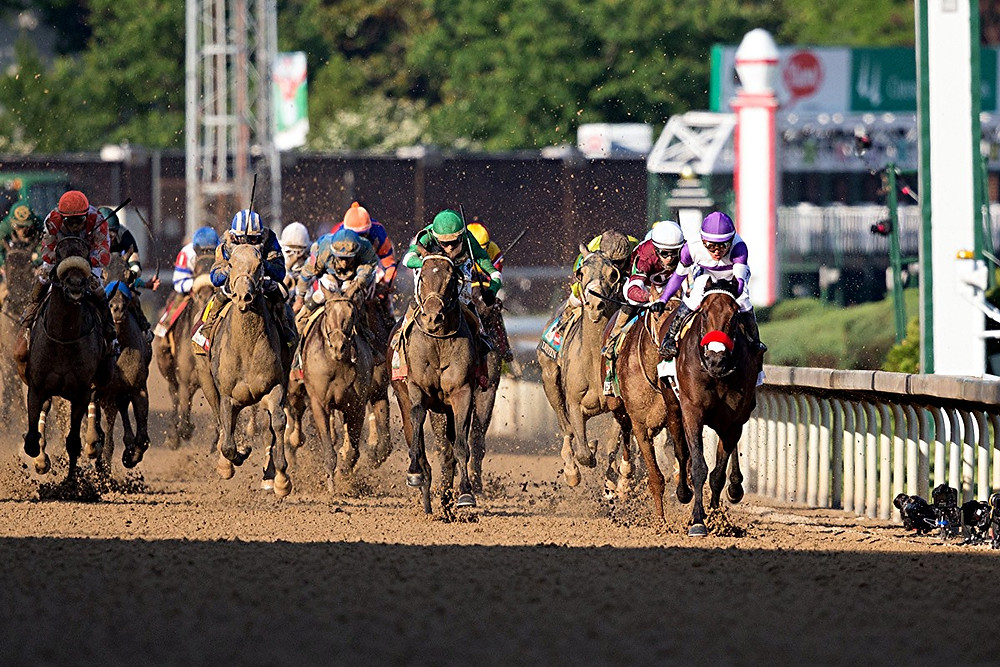 JUST LOOK AT HIM NOW. Nyquist, far right in front, wasn't getting much respect going into the 142nd running of the Kentucky Derby. But after winning the race on Saturday, May 7, at Churchill Downs, he's finally getting all the respect he deserves. (Photo by Wendy Wooley/EquiSportPhotos.com)