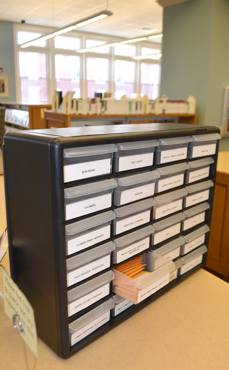 A SEED LIBRARY features many varieties of high-quality, free seeds at the Woodford County Library and Midway Branch Library. The seed giveaway encourages gardening, being outside and growing your own vegetables, said adult services librarian Emily Saderholm. (Photo by Bob Vlach)
