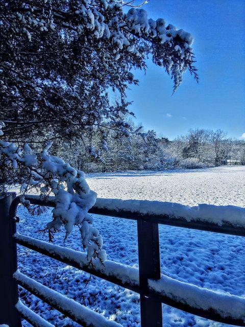 Linda Pavey snow
