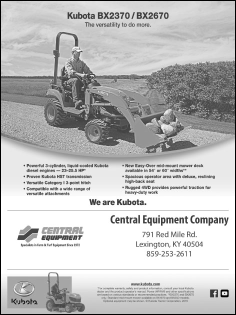 Central-Equipment-Kubota-BX