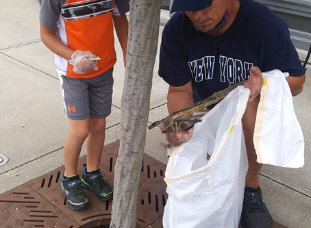 Volunteers pick up more than 400 pounds of trash in park, downtown Versailles