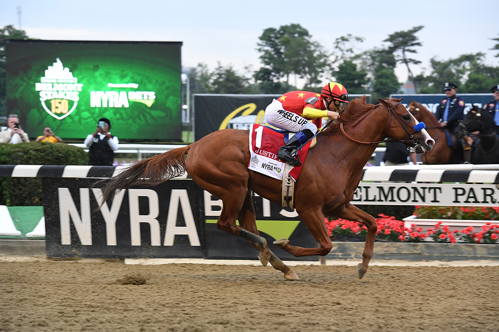 WINSTAR FARM'S JUSTIFY won the Belmont Stakes Saturday, June 9,to become the 13th horse to win the Triple Crown. (Photo by Adam Coglianese)