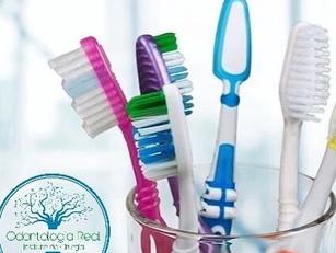 Como escolher sua escova dental?
