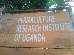 PRI-Uganda Sign Post.jpg