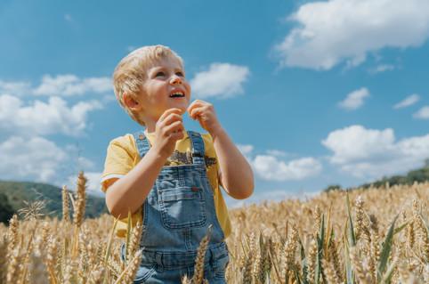 Boy in corn field