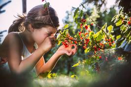Girl examining berries