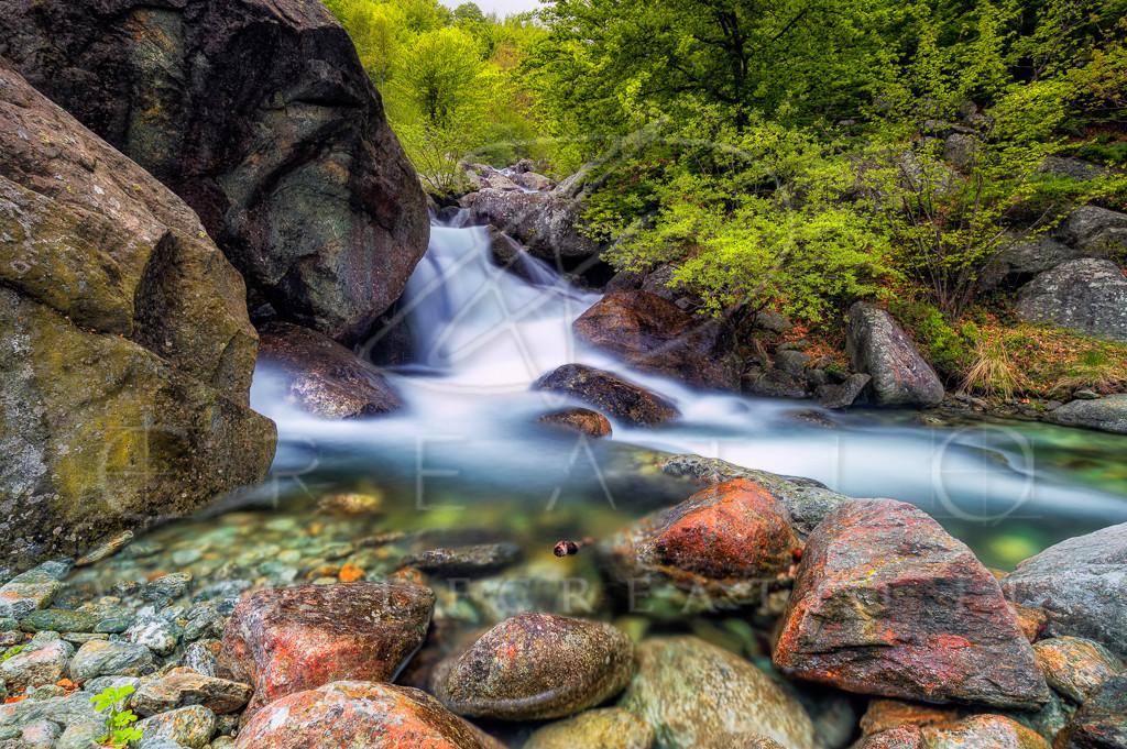 SIN-066_Sangone creek during spring.jpg