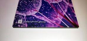 Gallery Print Lucido.jpg