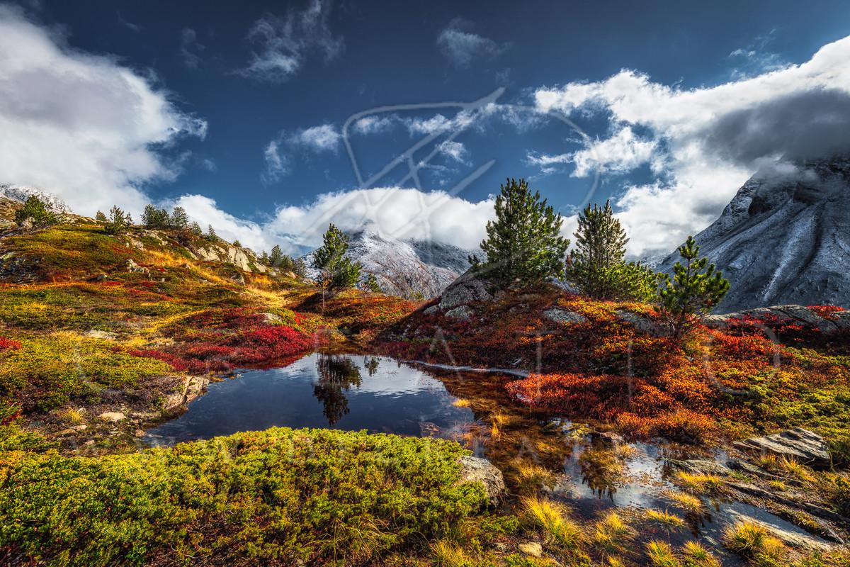SIN-078_Autumn Paradise.jpg