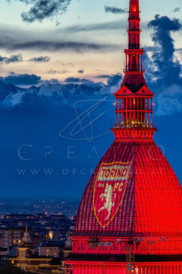 SIN-042_Grande Torino.jpg