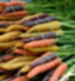 vegetable-3302546_1920.png