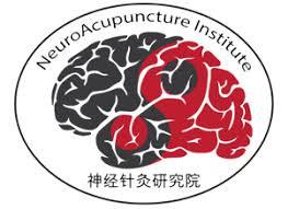 Neuro-Acupuncture training course report