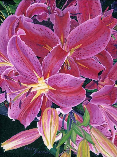 """Fuscia Lillies"" Giclee Print"