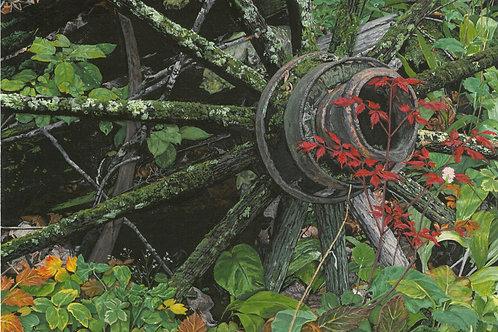 """Forest Floor"" Giclee Print"