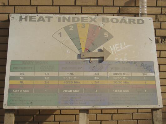 Heat Cat Hell