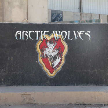 25TH INF DIV ARCTIC WOLVES