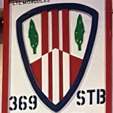 369 Sustainment Brigade Mural