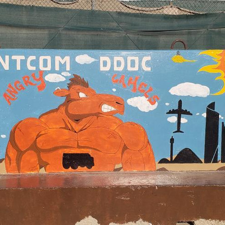 CENTCOM DDOC- Angry Camels