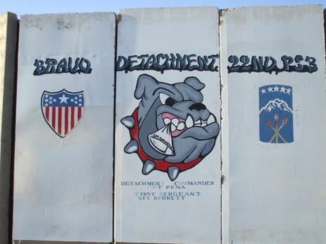 Bravo Detachment 22nd PSD