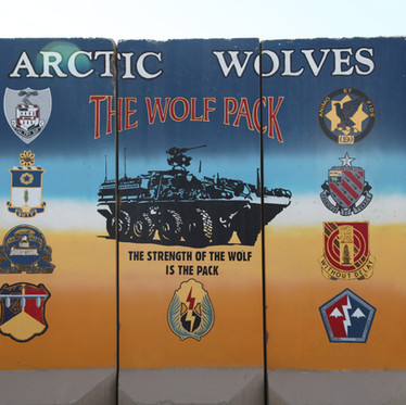 ARCTIC WOLVES- THE WOLFPACK