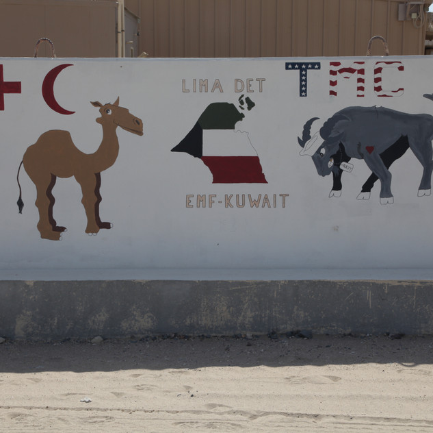 L Det- Expeditionary Medical Facility Kuwait