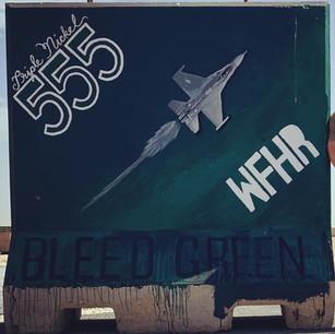 "555th Fighter Squadron ""Triple Nickel"" 1/3"