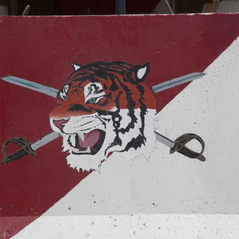 TIGER CAVALRY