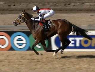 Comfortable win for Bold Fortune!