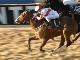 IMPERIAL MASTER ends the Highveld season on a high!