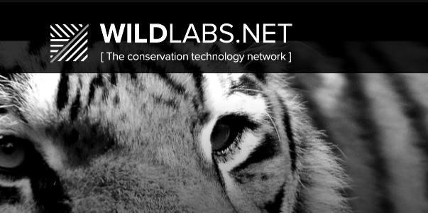 Wild Labs!